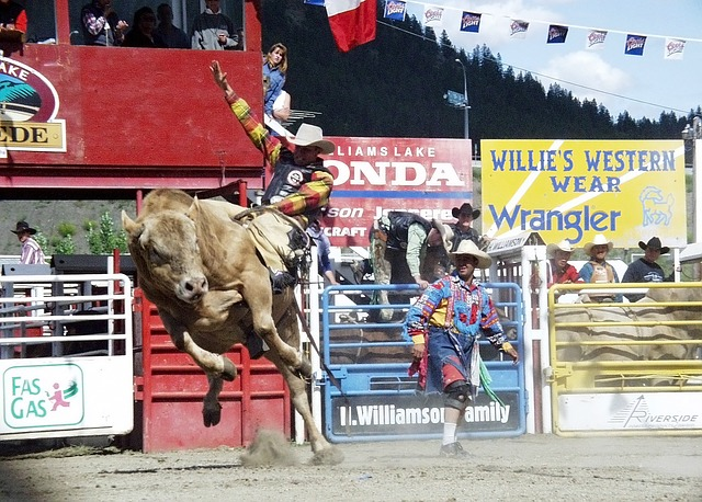 The Calgary Stampede Annual Rodeo