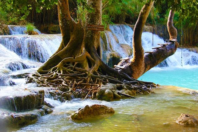 Doi Suthep–Pui National Park