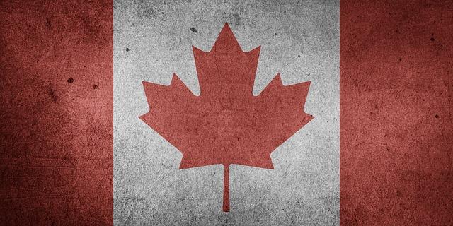 CANADIAN DOLLARS STOCK SALE