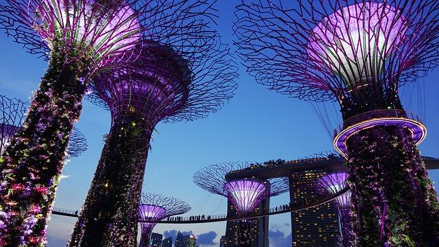 LIMITED STOCK SALE! SINGAPORE DOLLARS